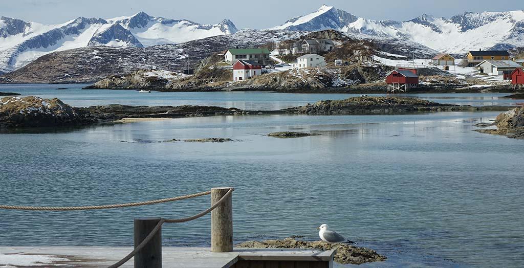 Havneområdet i Sommarøy